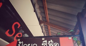 หน้าร้านป้ายา