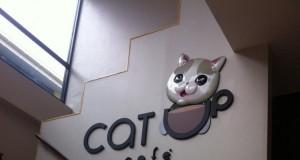 CAT UP CAFE