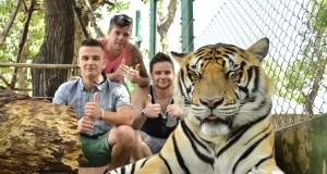 คุ้มเสือ แม่ริม-ถ่ายรูป