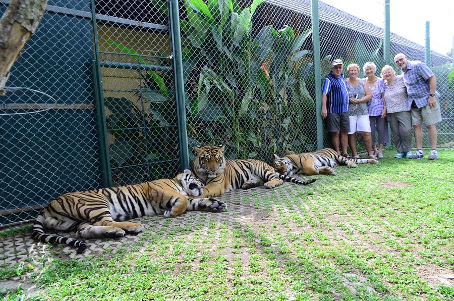 คุ้มเสือ แม่ริม-นักท่องเที่ยว