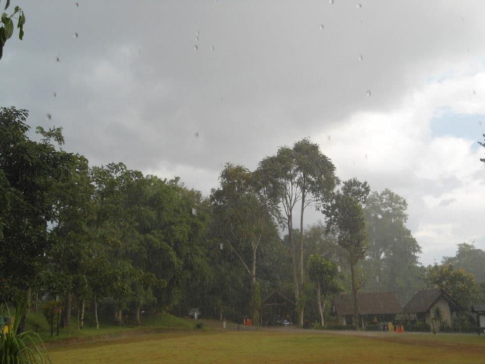 ผาเเดง-ฤดูฝน