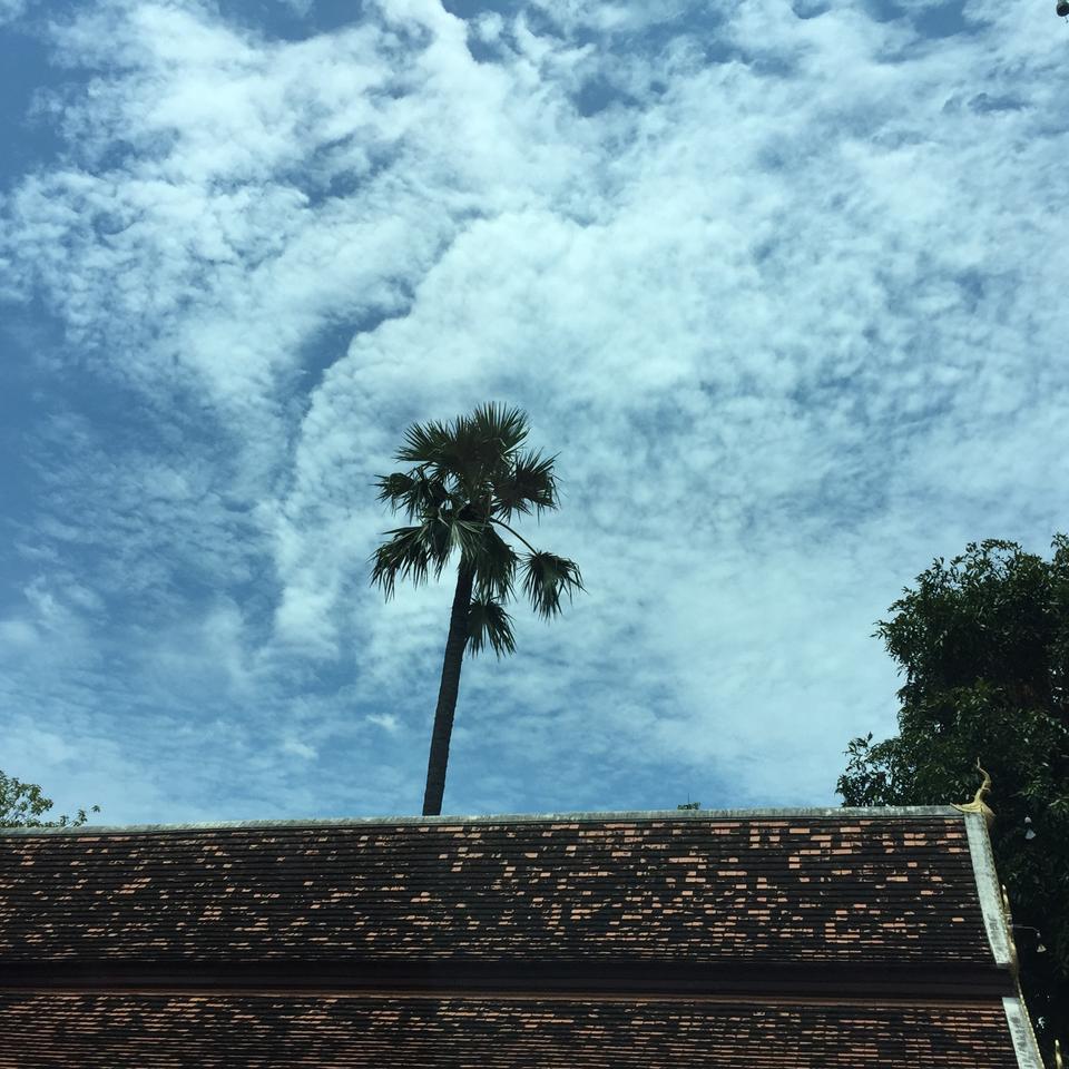 วัดต้นเกว๋น-ท้องฟ้า