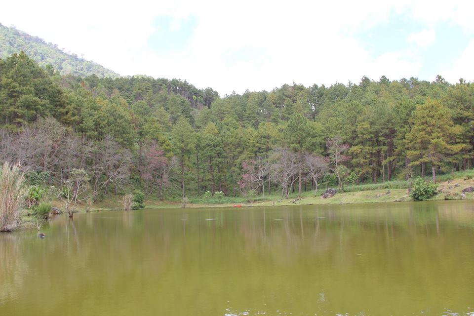 ศูนย์อนุรักษ์พันธุ์กล้วยไม้รองเท้านารี ดอยอินทนนท์-ทะเลสาบ