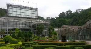 สวนพฤกษศาสตร์สมเด็จพระนางเจ้าสิริกิติ์-โรงเรือน