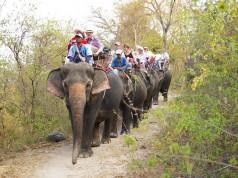หมู่บ้านช้างหัวหิน-เดินป่า