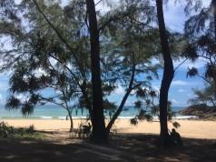 หาดในทอน-ป่าสน