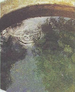อุทยานแห่งชาติขุนขาน-น้ำ