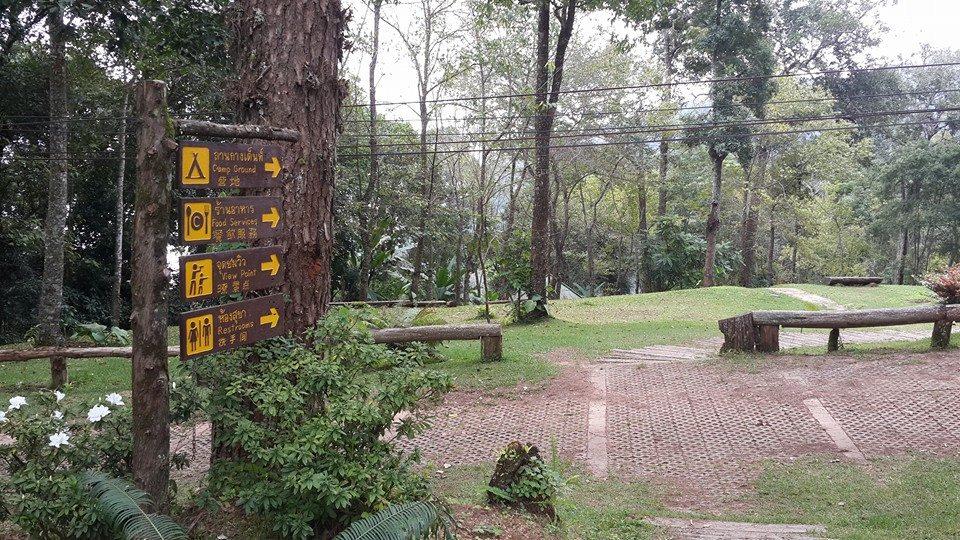 อุทยานแห่งชาติดอยสุเทพ-ปุย-บรรยากาศในอุทยาน