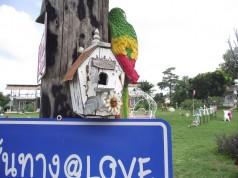 เส้นทาง@LOVE ทุ่งกระเจียว