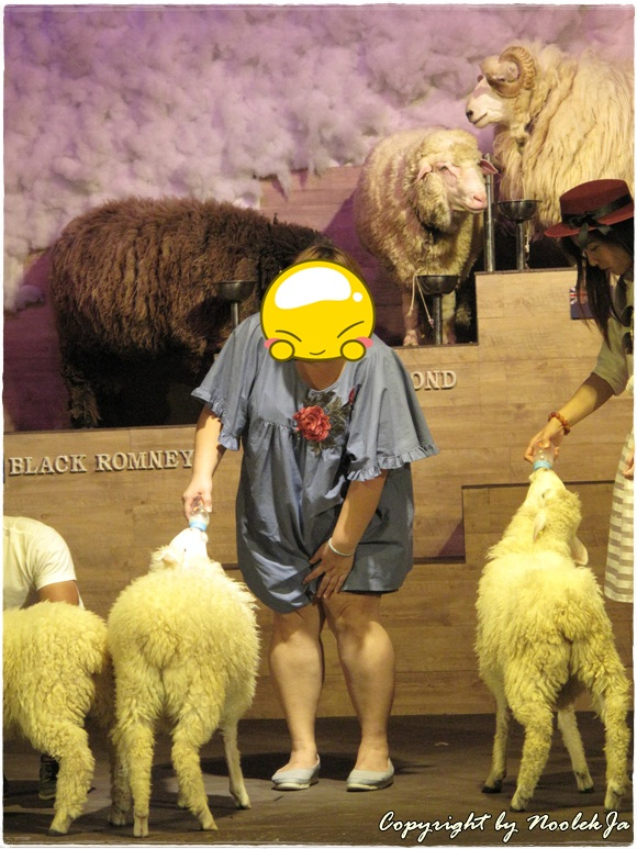 Scenery Sheep & Dog Show