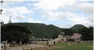 The Scenery Resort สวนผึ้ง ราชบุรี