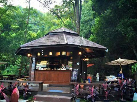 Lanna Resort & Valley Coffee