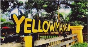 Yellow Mango-ป้ายร้านโดดเด่น