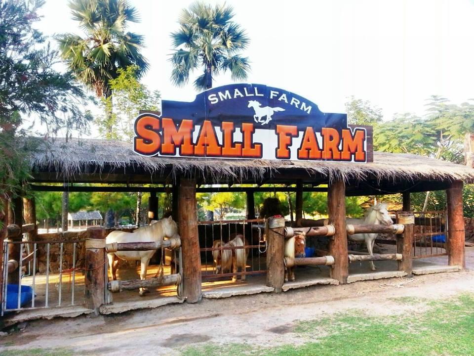Small Farm เชียงใหม่ ความสุขที่ไม่เล็ก