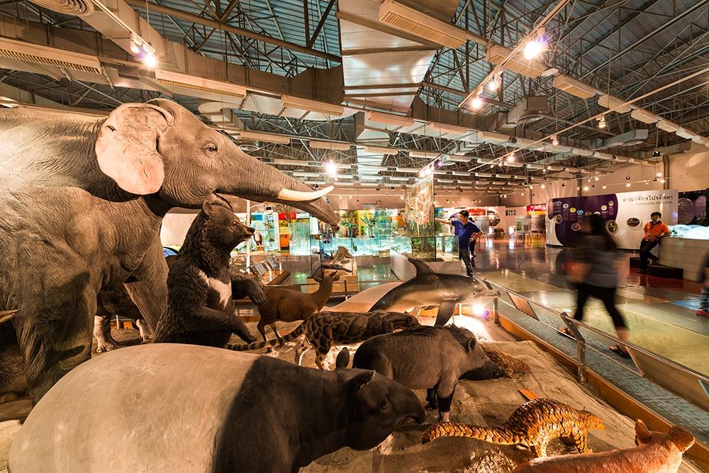 พิพิธภัณฑ์ธรรมชาติวิทยา (อพวช.)-สัตว์