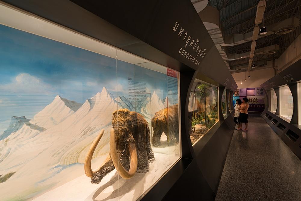 พิพิธภัณฑ์ธรรมชาติวิทยา (อพวช.)-เเมมมอธ