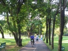 สวนวชิรเบญจทัศ-เลนจักรยาน