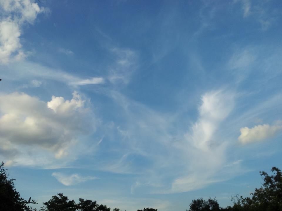สวนสมเด็จพระนางเจ้าสิริกิติ์-ท้องฟ้าสวยงาม