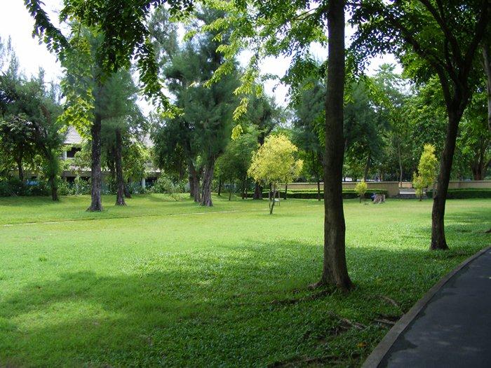 สวนเบญจกิติ-ความร่มรื่น