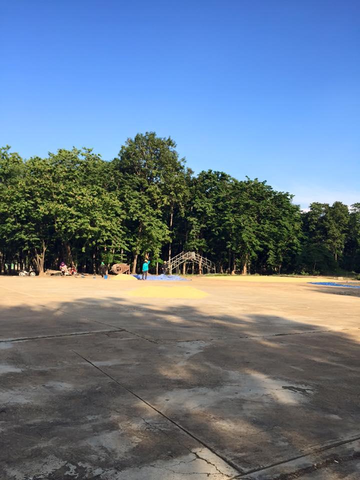 สวนหลวงพระร่วงเฉลิมพระเกียรติ-บรรยากาศ