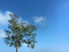 อุทยานแห่งชาตินันทบุรี-สวยงาม