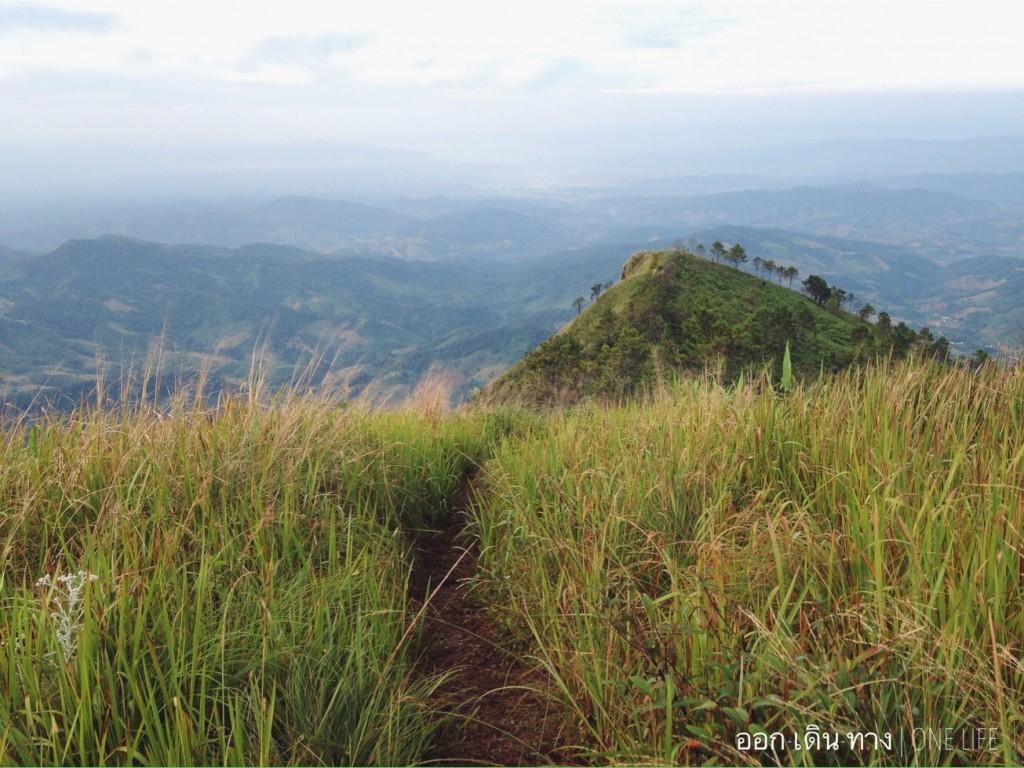 800 เมตรสุดท้าย ทุ่งหญ้าโล่งกว้างสู่จุดชมวิวภูลังกา