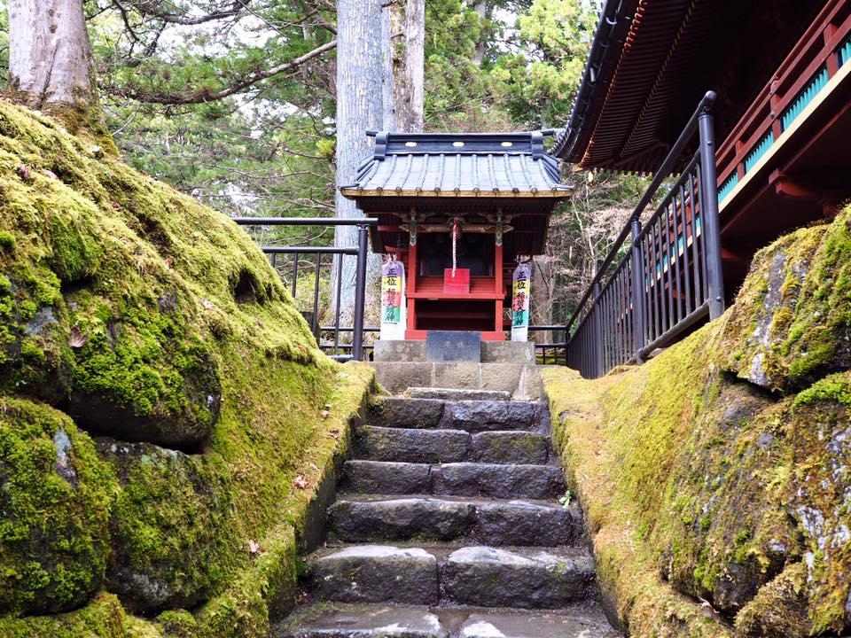 เที่ยวญี่ปุ่นคนเดียว
