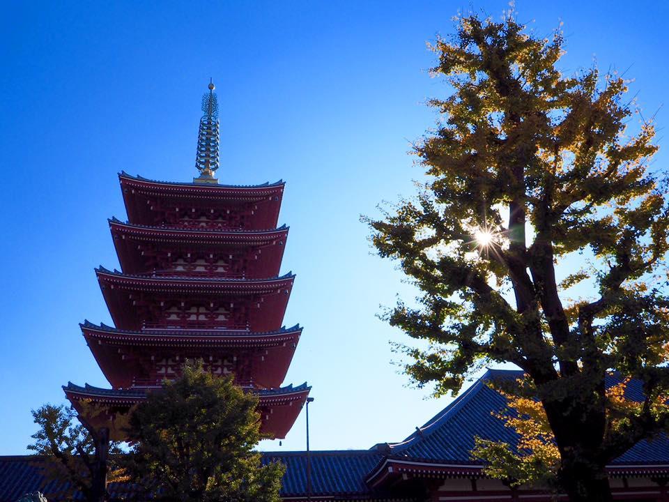 เที่ยวโตเกียว