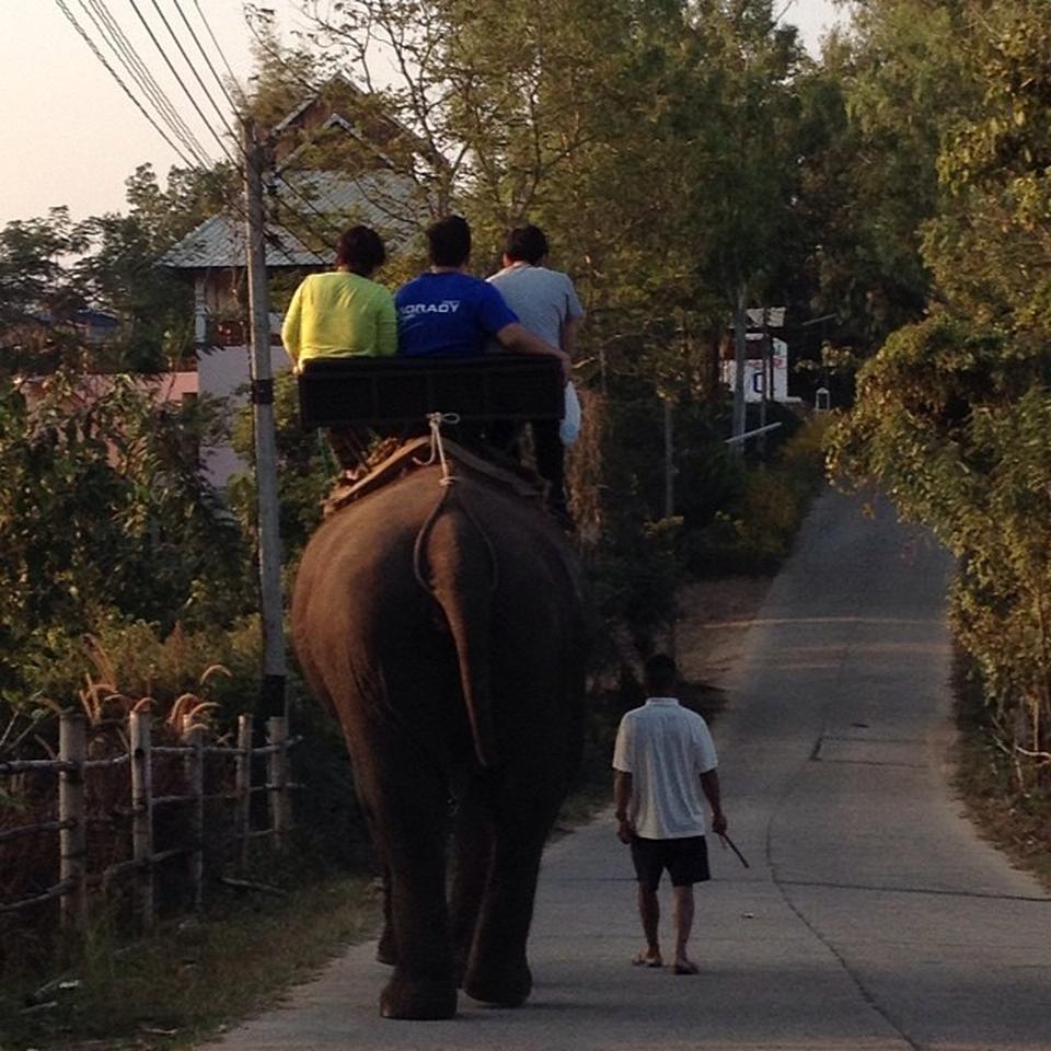 แคมป์ช้าง ลุงน้อย-เที่ยว