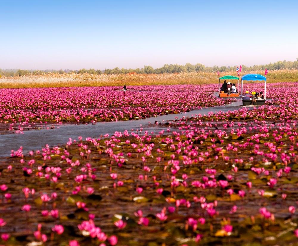 10 ที่เที่ยวน่าไปในอุดรธานี-ทะเลบัวแดง