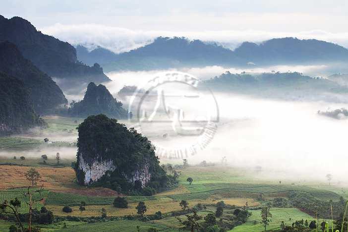 10 ที่เที่ยวห้ามพลาดในจังหวัดนครพนม-อุทยานแห่งชาติภูลังกา