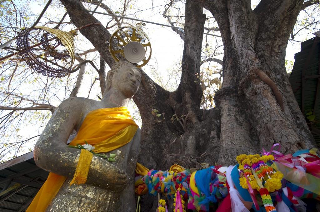 10 เเหล่งท่องเที่ยวดังของมหาสารคาม-พระพุทธรูปยืนมงคล